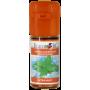 Aroma Xtra Mint (Flavourart) 10ml