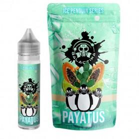 PAYATUS - ICE PENGUIN - Aroma 20 ml (Galactika)